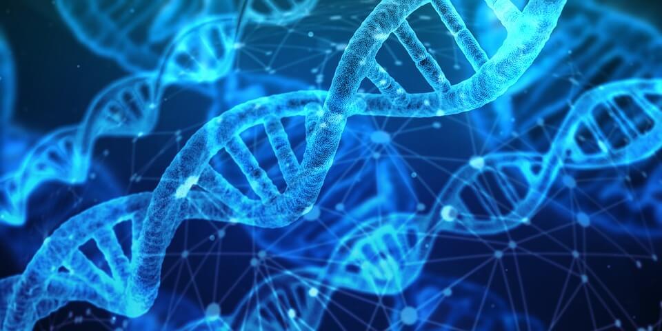 Top 10 Genomics Companies in the World 2019